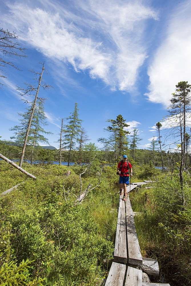 Man Walking On Boardwalk While Hiking In White Mountains