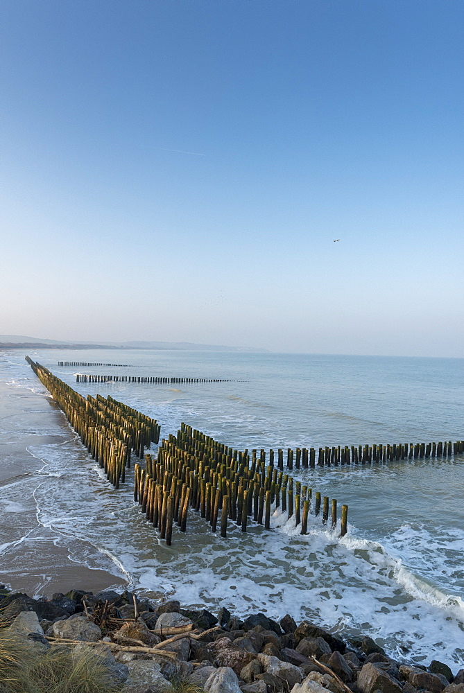 Alignment of wooden piles planted in the sand to disperse the energy of the swell and favor the return of sediments, winter, Opal Coast, France - 860-286989