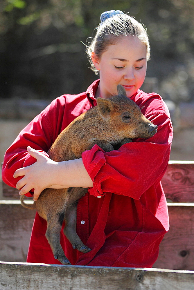 Girl carrying a young wild boar, France