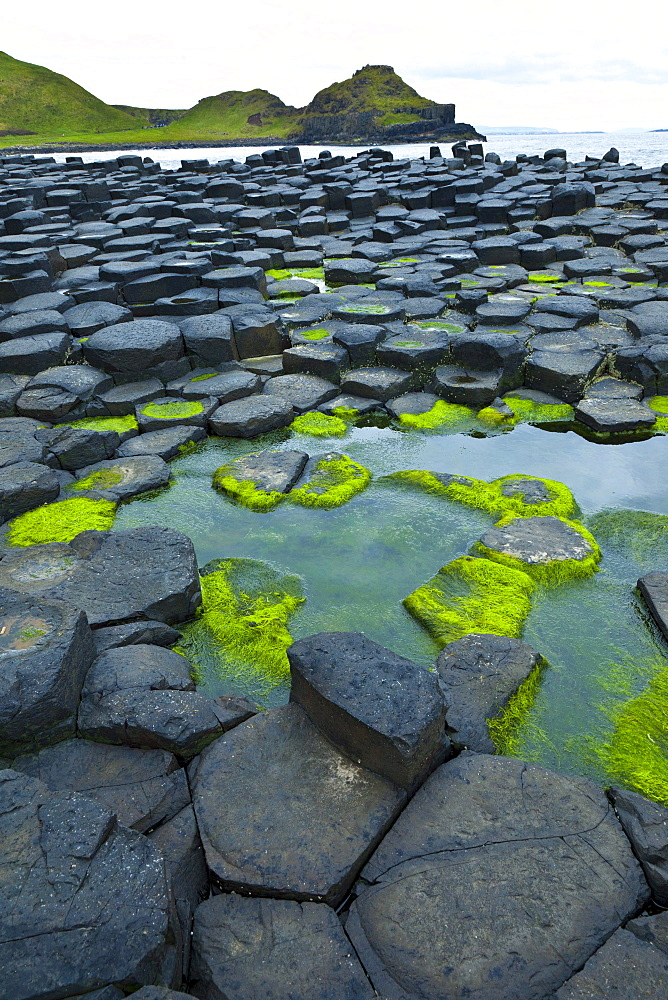 The Giant's Causeway is located on the northern coast of County Antrim UNESCO world heritage Ocean Scenery Travel