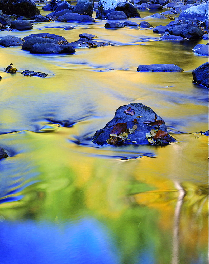 reflected colour in the middle of the little river Great Smoky Mountains National Park TN USA - 869-5214