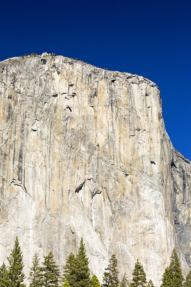 El capitan with climbers barely visible in Yosemite National Park, California, USA.