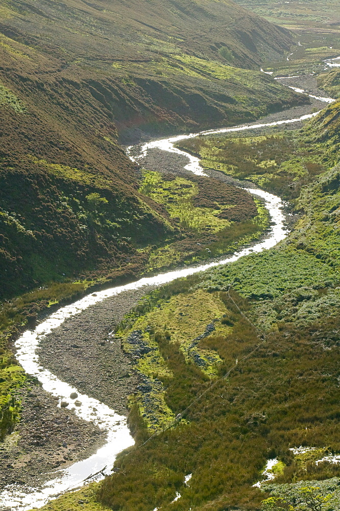 A meandering river in the Hareden Valley, Trough of Bowland, Lancashire, England, United Kingdom, Europe