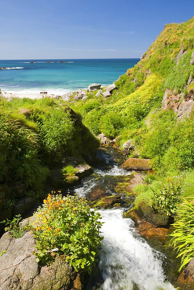 A stream down to Portheras Cove near St. Just on the Cornish Coast, Cornwall, England, United Kingdom, Europe