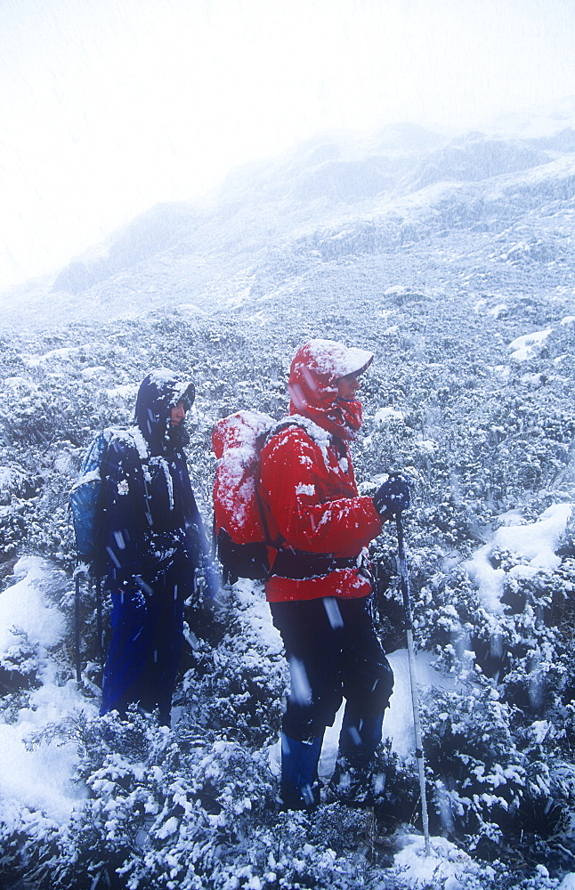 Women fell walkers in heavy snow on Quinag, Sutherland, Scottish Highlands, Scotland, United Kingdom, Europe