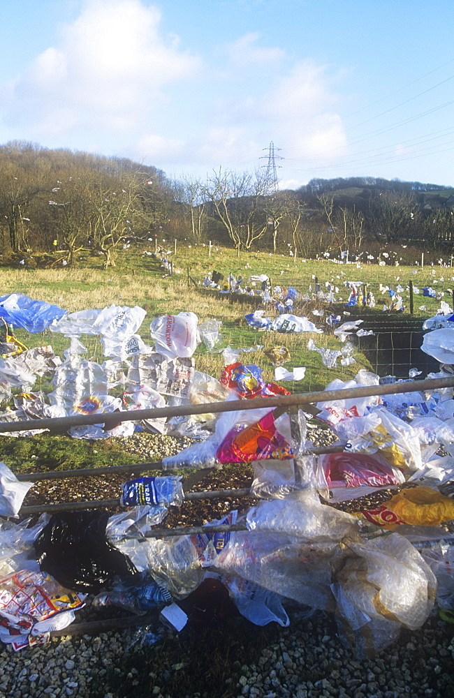 Plastic bags blown from a landfill site in Barrow in Furness, Cumbria, England, United Kingdom, Europe