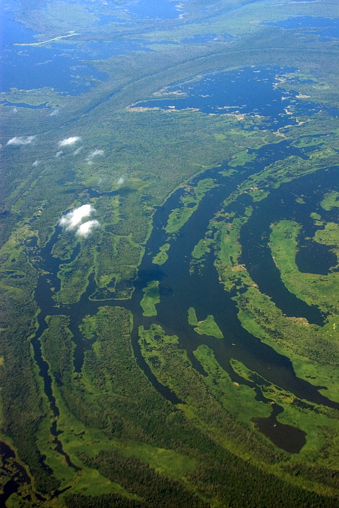 Aerial view of flooded tropical rain forest, Amazonas, Brazil, South America