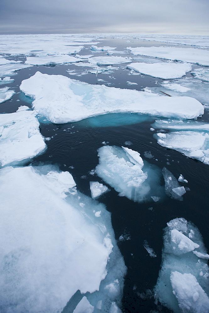 Longyearbyen, Moffen Islands, South ice sheets, Svalbard, Norway