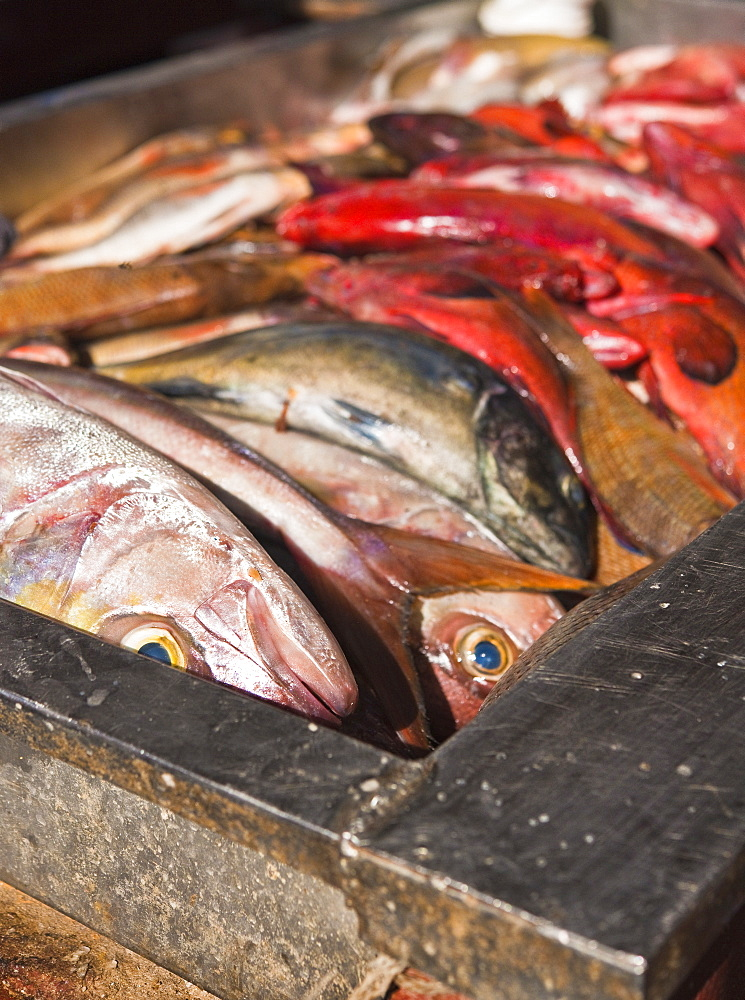High quality stock photos of fish processing for Chinese fish market near me