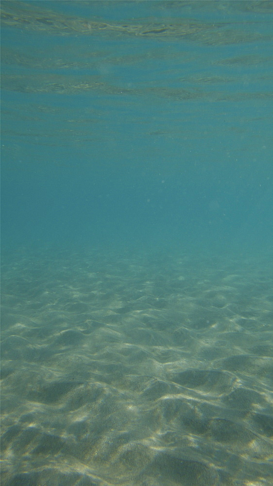 blue water in shallow sandy seabed