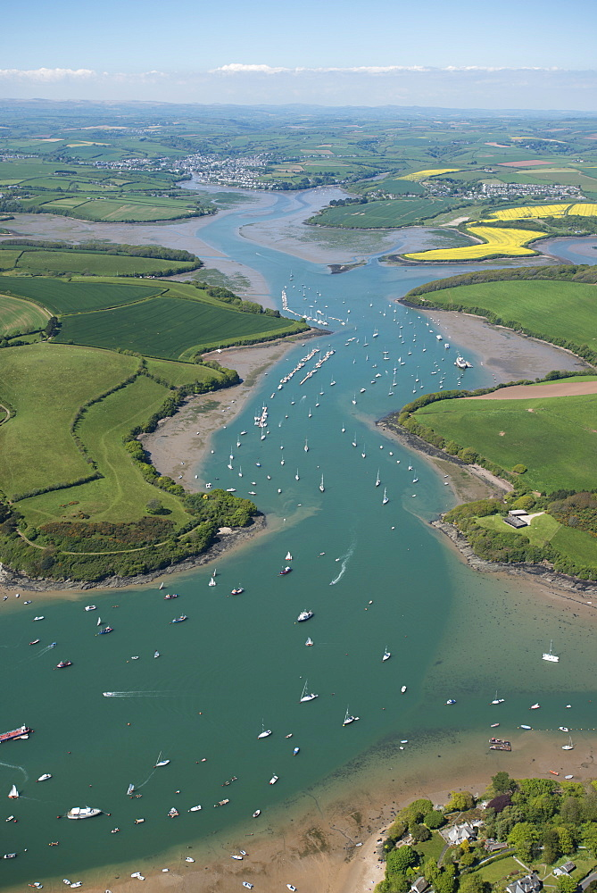 Kingsbridge Estuary, Devon, England, United Kingdom, Europe  - 934-669
