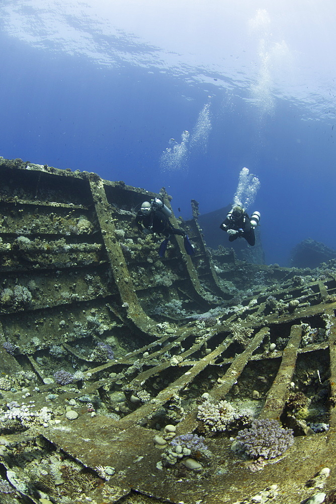 Diving the wreck of The Giannis D, Red Sea, Egypt, North Africa, Africa - 934-693