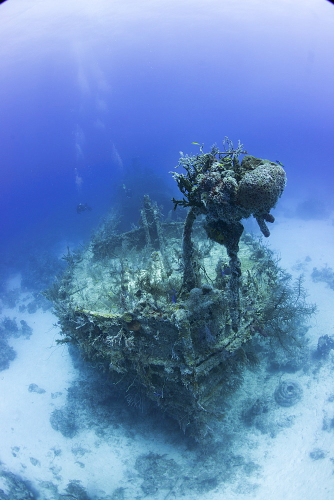 Barge wreck in the Bahamas, West Indies, Central America - 934-700