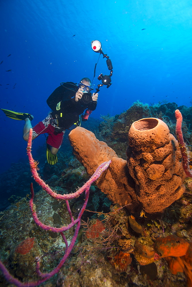 Underwater photographer with barrel sponge, Turks and Caicos, West Indies, Central America - 934-731