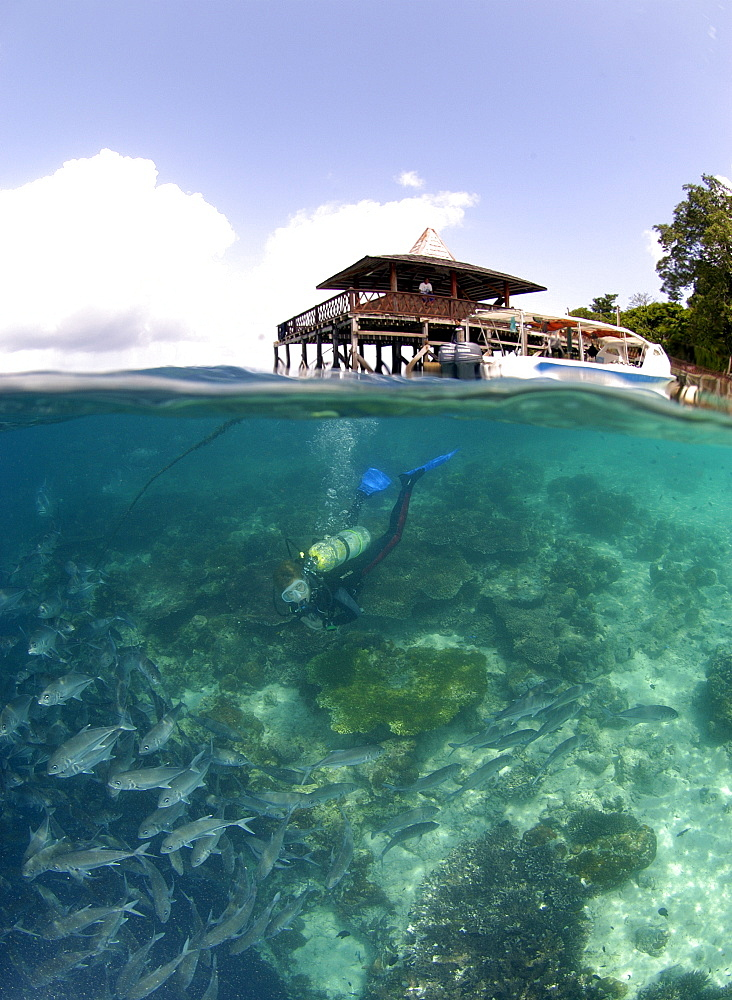 Reef/jetty over/underwater .  Malaysia   (RR) - 973-70