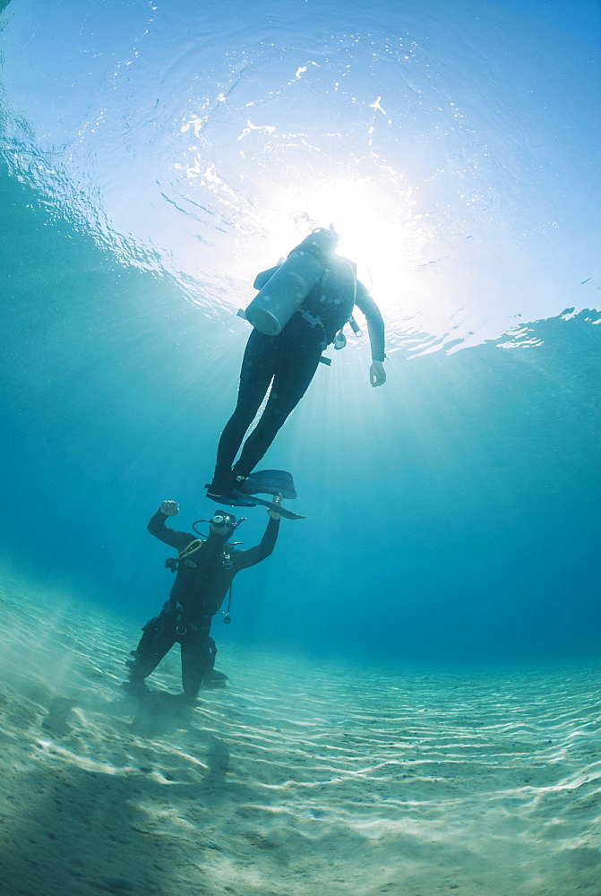 Scuba diving instructor and student completing hovering skills in shallow water, Naama Bay, Ras Mohammed National Park, Sharm El Sheikh, Red Sea, Egypt, North Africa, Africa - 974-405