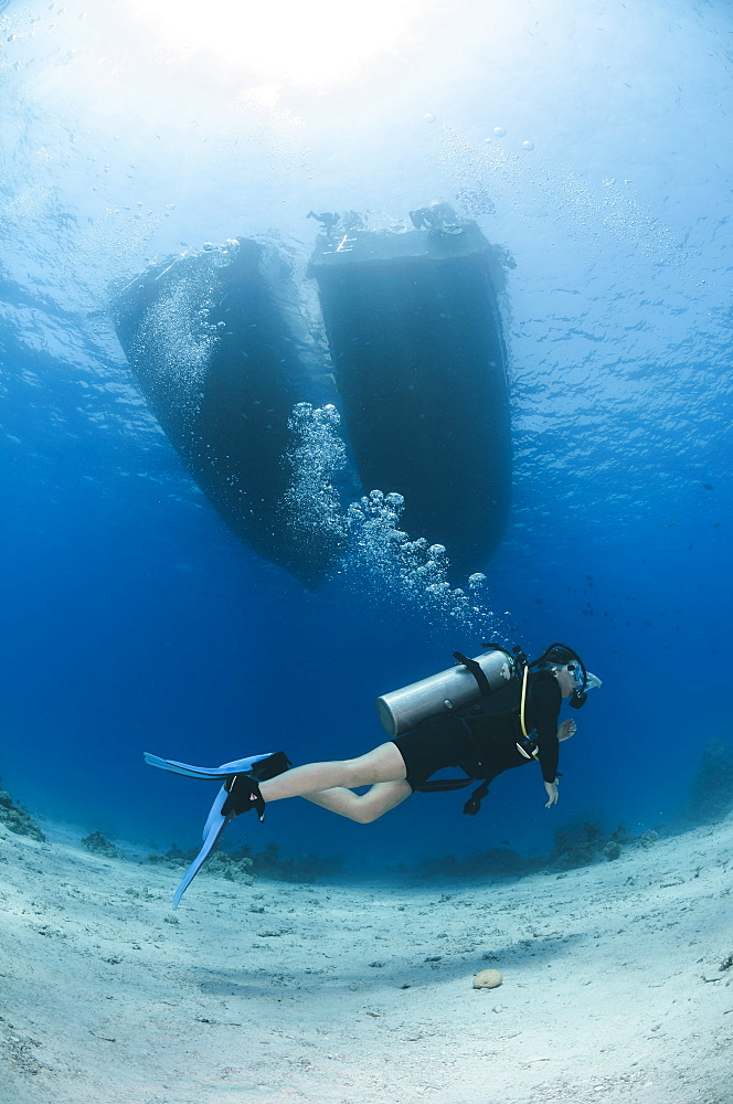 Female scuba diver swimming underneath moored up dive boats, Sharm El Sheikh, Red Sea, Egypt, North Africa, Africa - 974-424