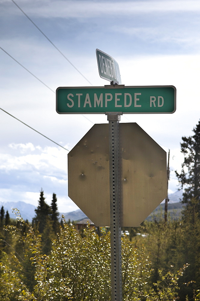 Americal style road sign indicating the Stampede road; a mining road built in 1961 to link a previous Trail (Stempede) made famous by the exploits and eventual death of Chris McCandless in 1992.  Denali, Alaskan Interior. Denali, Alaska, USA