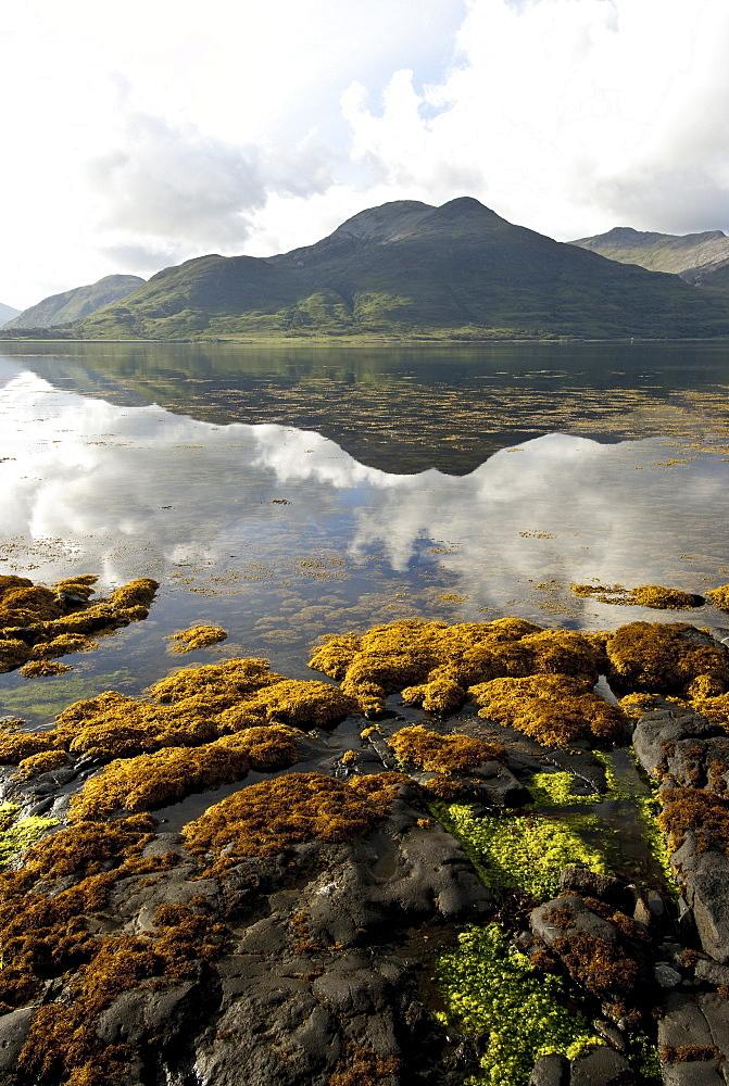 Landscape on the Isle of Mull, Inner Hebrides, Scotland, United Kingdom, Europe - 978-468
