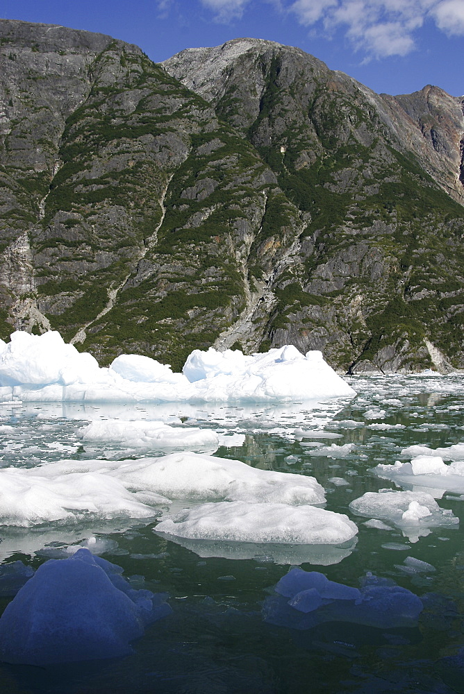 Icebergs calved from the Sawyer Glacier in Tracy Arm in southeast Alaska, USA.
