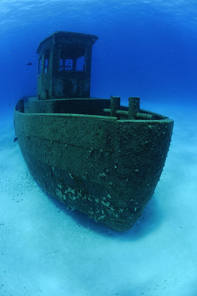 Wreck of the ''Blue Plunder''- Bahamas - 981-74