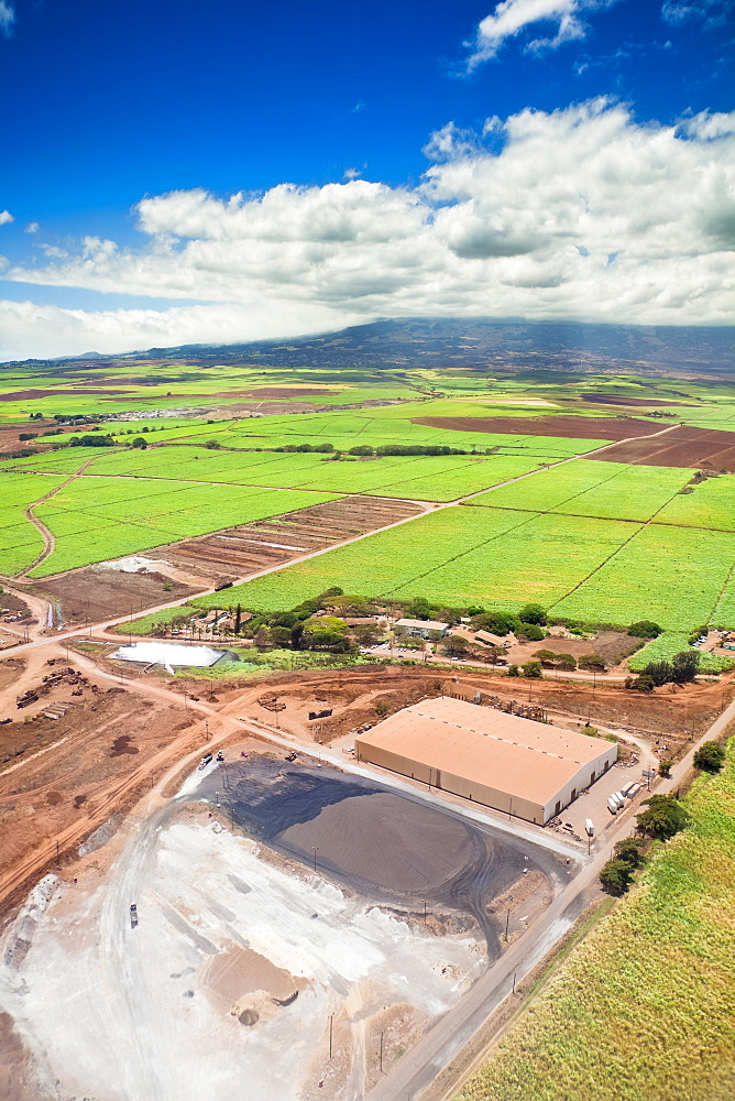 The Valley of Sugar - Maui's controversial 37,000 acre sugar cane fields and plant - fields are set to burn when harvesting, creating enormous smoke, ash and dust, Maui, Hawaii, USA