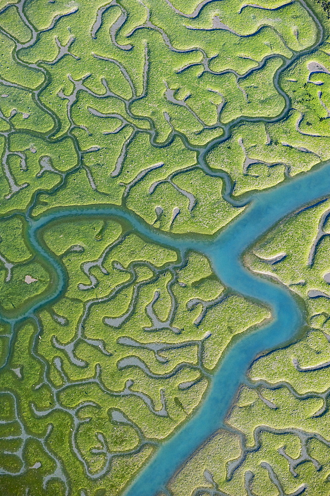 Aerial view of saltmarsh at low tide near Cadiz, Spain - 987-509
