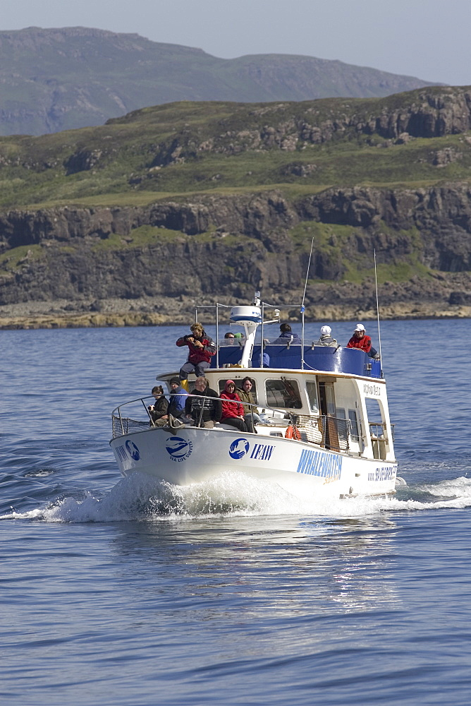 """Whale-watch vessel, """"Alpha Beta"""".  Sea Life surveys were the first organisation to understand the potential for whale-watching in the West of Scotland.  Hebrides, Scotland"""