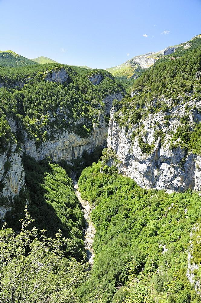 Yaga River and karst limestone cliffs of Escuain gorge, Ordesa and Monte Perdido National Park, Huesca, Aragon, Spain, Europe
