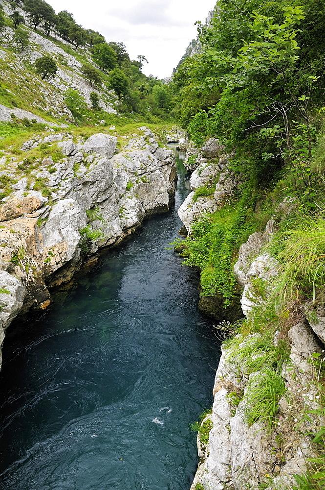 Rio Cares carving through karst limestone valley in the Picos de Europa mountains, near Panes, Asturias, Spain, Europe