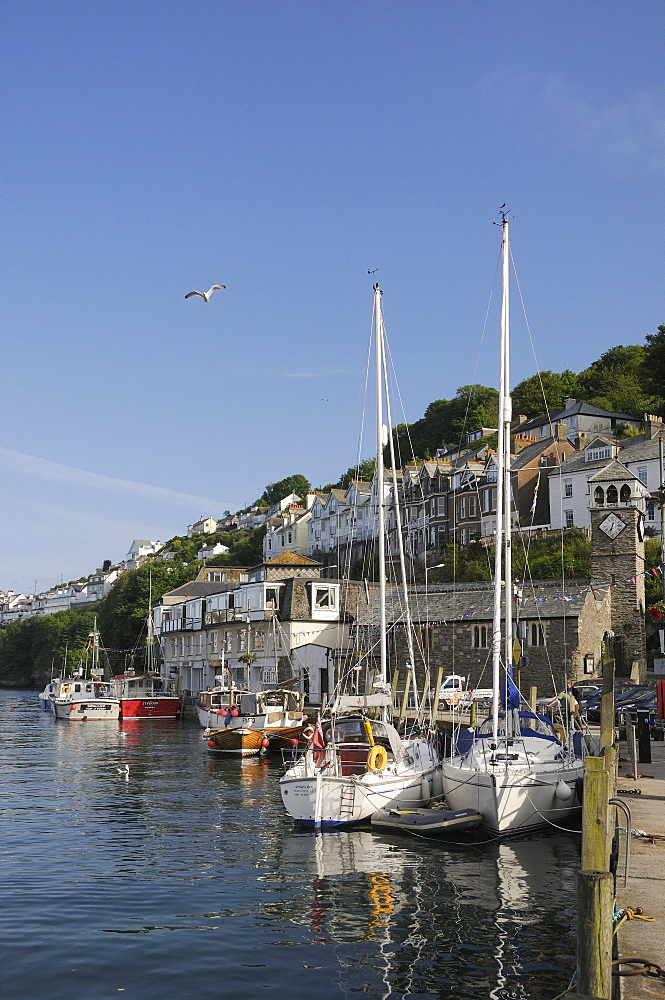 Sailing yachts moored in Looe harbour, Cornwall, England, United Kingdom, Europe
