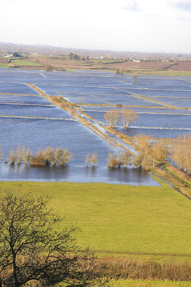 Overview of extensively flooded pastureland and farm track on West Sedgemoor, Somerset Levels, after weeks of heavy rain, Somerset, England, United Kingdom, Europe - 989-319