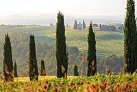 Early morning, cypress trees, Capella di Vitaleta, Chapel, Val d'Orcia, Tuscany, Italy