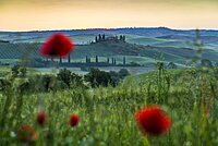 landscape near San Quirico d`Orcia, Val d`Orcia, province of Siena, Tuscany, Italy, UNESCO World Heritage