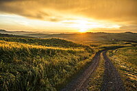 landscape near Pienza at sunset, Val d`Orcia, province of Siena, Tuscany, Italy, UNESCO World Heritage