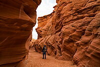Man walking in slot canyon known as Owl Canyon, near Page, Arizona, United States of America