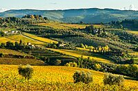 View of valley of Panzano in Chianti, patterned lines of vineyards, cypresses and olive trees with farmhouses, Tuscany, Italy, Europe