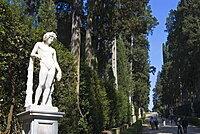 Viottolone, Viottolone Avenue, Boboli Gardens, Florence, Tuscany, Italy, Europe