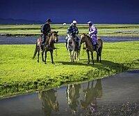 Nomad on horses, Arkhangai province, Mongolia, Asia