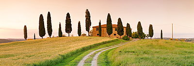 Farm house with cypress trees at sunset, near Pienza, Val d'Orcia (Orcia Valley), UNESCO World Heritage Site, Siena Province, Tuscany, Italy, Europe
