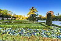 Flowers and gardens, Parque del Buen Retiro, Madrid, Spain, Europe