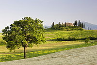 View of Belvedere from Val d'Orcia, San Quirico d'Orcia, near Pienza, Tuscany, Italy, Europe