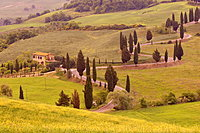 Road from Pienza to Montepulciano, Monticchiello, Val d'Orcia, Siena province, Tuscany, Italy, Europe