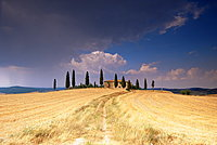 Cottage and cypress trees near Pienza, Val d'Orcia, Siena province, Tuscany, Italy, Europe