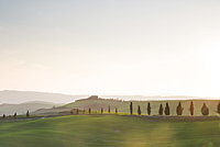 Farm, country road and cypresses near Pienza at sunset, Val D'Orcia, Tuscany, Italy, Europe