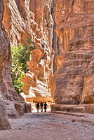 Tourists walking through the Siq, Petra, UNESCO World Heritage Site, Jordan, Middle East