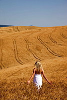 Italy Tuscany Val D'Orcia Pienza Woman in Corn field MODEL RELEASE 1108