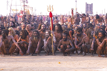 Naked sadhus await the continuation of their procession at the Kumbh Mela in Allahabad India.