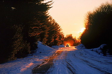A pick-up truck heads west as the sunrises on the Golden Road in Maine's northwoods.