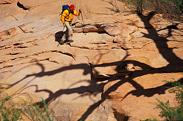 Todd Snyder uses trekking poles to keep his balance on the uneven terrain around Lake powell in Utah.